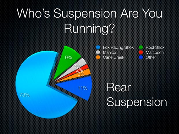Rear Mountain Bike Suspension Results Bike198