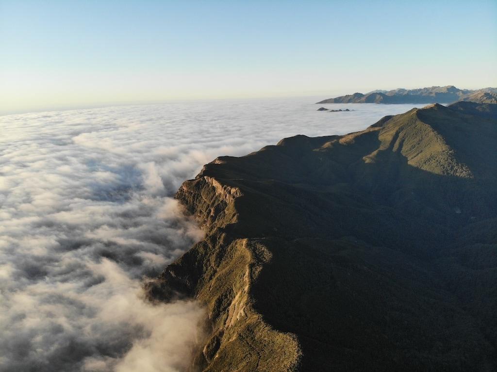 Pike 29 mountain bike trail in new Zealand